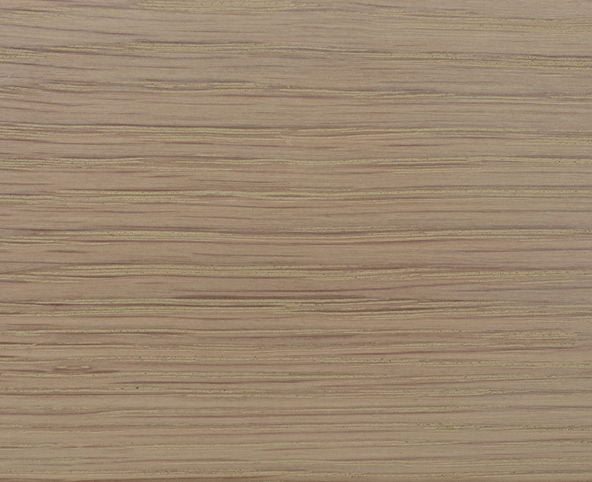 Natural Chalk Wood Sample